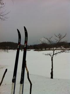 レクリエーション公園スキー.JPG